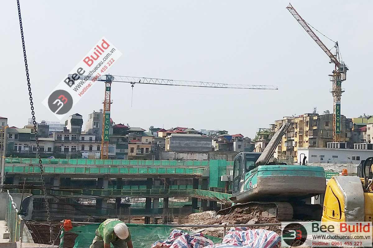 Cho thuê cẩu tháp 8 tấn Motocat FMP6015 tại Dự án 201 Minh Khai